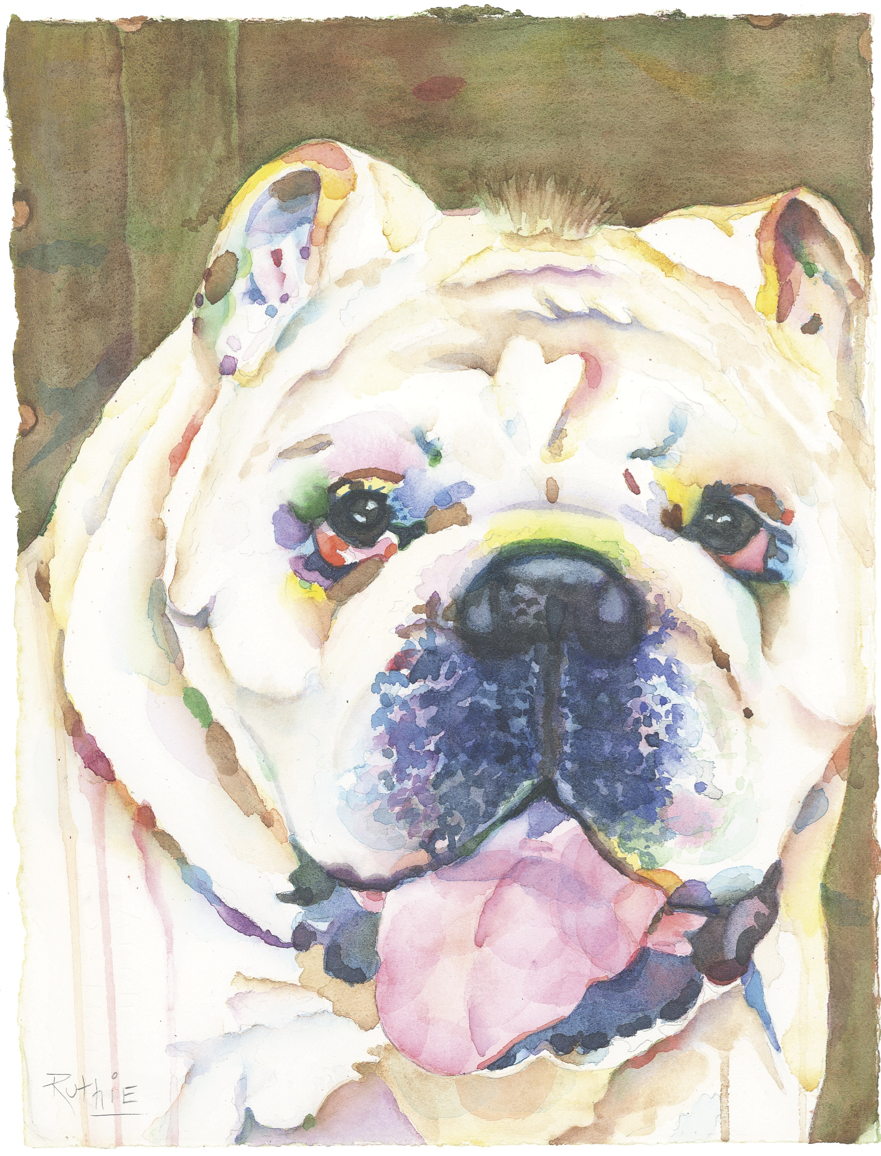 White Bulldog